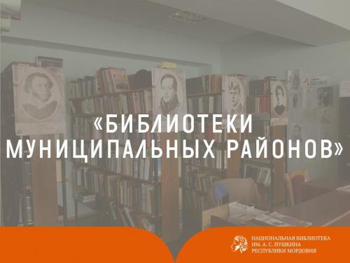 Библиотеки муниципальных районов