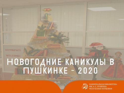 Новогодние каникулы в Пушкинке - 2020